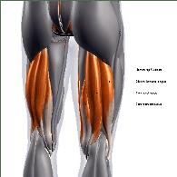 hamstring pain treatment