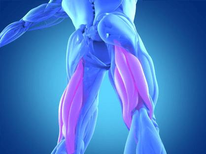 thigh-pain-diagnosis